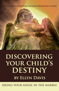 Discovering Your Child's Destiny